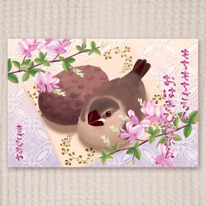 楓工房 / ポストカード・おはぎひなぶん/文鳥・桜ひな / 202A0248ネコポス 対応可能 ( BIRDMORE バードモア 鳥用品 鳥グッズ 雑貨 鳥 とり プレゼント  )