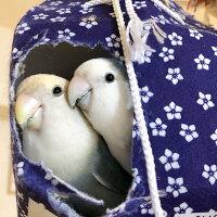 "tokyoShiori/LOVE!Bird展公式カタログ2/コザクラインコ/245A0238""クロネコDM便可能""(B"
