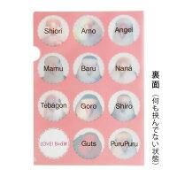 tokyoShiori/LOVE!Bird展クリアファイル/コザクラインコ/245A0240ネコポス対応可能(BIR