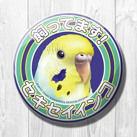 TOMO YAMASHITA DESIGN STUDIO. / 飼ってます缶バッジ  「 セキセイインコ レインボー 」 / 195A0242 ネコポス 対応可能 ( BIRDMORE バードモア 鳥用品 鳥グッズ 雑貨 グッズ 鳥 とり トリ インコ プレゼント )