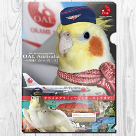 TOMOYAMASHITA DESIGN STUDIO. A4 クリアファイル オカメエアライン 195A0373  ネコポス 対応可能 ( BIRDMORE バードモア 鳥グッズ 鳥用品 雑貨 鳥 バード プレゼント )