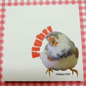 だが屋 / メモパッド / キンカチョウ / ぼんてん Fight ! / 083A0293 ネコポス 対応可能 ( BIRDMORE バードモア CRAFT GARDEN 鳥用品 鳥グッズ 雑貨 鳥 とり プレゼント )