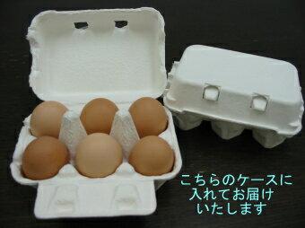 【送料無料】【秋田産】【卵】庭鶏の卵7ケース42個2000円 送料無料 ポッキリ【ポッキリ2,000円】【送料込み&税込 2,000円ポッキリ】