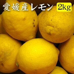 【訳あり】愛媛産レモン2kg(約13〜18玉)『安心・安全がうれしい国産レモン!』【送料無料】