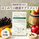 【楽天1位】nagomi KOUSO サプリメント 国産 酵素サプリメント 日本産 野菜 乳酸菌 黒酢 L-カルニチン 補酵素 ビタミ…