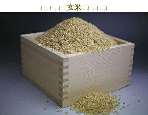 新潟栄産自家製 令和2年産 コシヒカリ 玄米 10kg 混ざりが全く無い 純100% BKS-010 送料無料