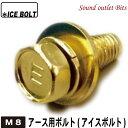 ネコポス可●ICE BOLT (アイスボルト)ボディーアース用ボルトM8200系ハイエースにお勧め!
