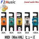 ■■ネコポス可●F2Music/FS-R1gMIDIプレミアムロジウムコーティングMIDIヒューズ(Mini ANL)