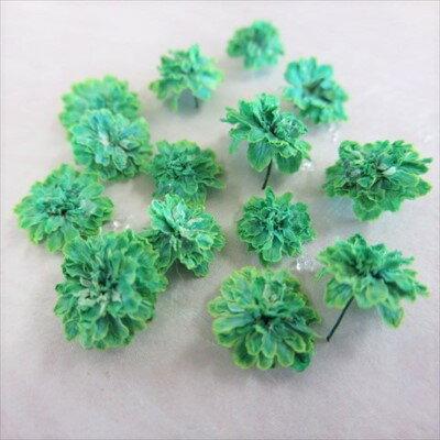 ドライフラワー 八重コデマリ 緑色 /ハーバリウム 花材 レジン