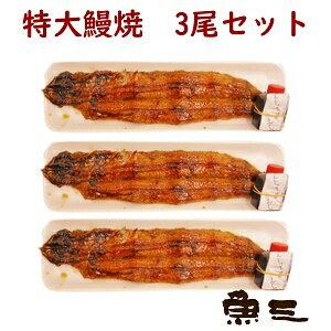【魚三・活うなぎの蒲焼 3尾入 エコパック】