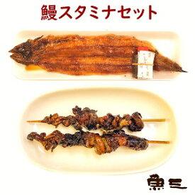 鰻スタミナセット 鰻焼き1尾 + 鰻肝2串  パック