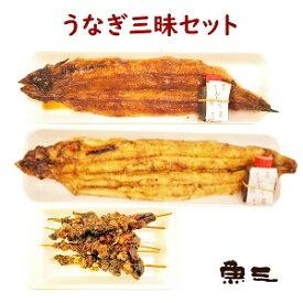 鰻三昧 鰻焼き2尾+ 肝串5本 包装なし