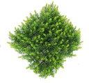 人工芝 26cmスギゴケマット (カクテルリーフ マット 造花 人工草 杉苔 DIY 壁面装飾)(屋外使用可能)