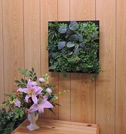 壁面造花ディスプレイB (人工植物 アートフレーム グリーン)