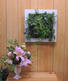 壁面造花ディスプレイA (人工植物/アートフレーム/グリーン)