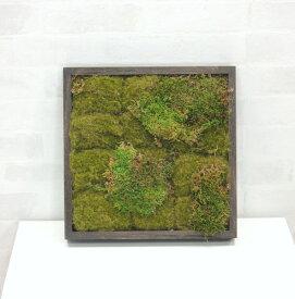 壁面造花ディスプレイ 流木 (人工植物/アートフレーム/グリーン)