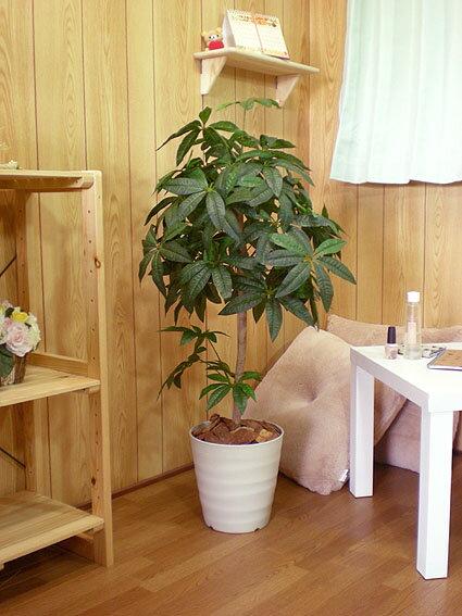 パキラツリー 100cm (グリーン 人工樹木 人工観葉植物 造花 1m インテリア)
