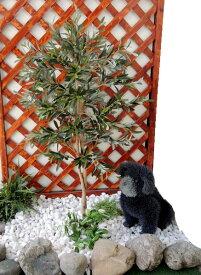 オリーブの木 高さ100cm (造花 人工観葉植物 ガーデニング 造園 庭園 坪庭 インテリア 洋風 和風 装飾 小型 フェイク)