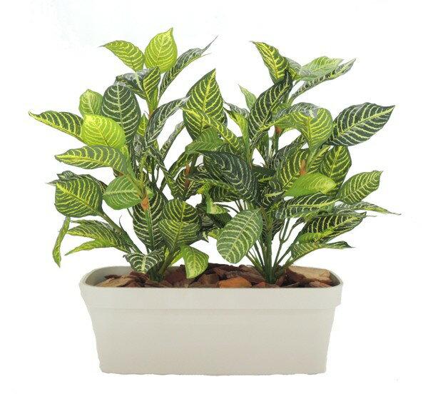 ダニアプランターA 高さ60cm (幅50cm 造花 フェイク 人工観葉植物 インテリア おしゃれ 装飾 ミニサイズ 作り物 プラント)