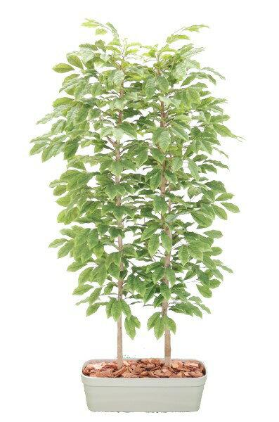 チェリーの木パーテーション180cm(間仕切 フェイク 造花 インテリア 人工観葉植物 1.8m サクランボ)
