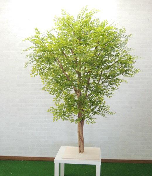 大型サイズ 明るい葉のトネリコ立ち木 高さ180cm(フェイク ゴールデンリーフ 人工観葉植物 造花 樹木 造木 室内 装飾 フェイク 大型)
