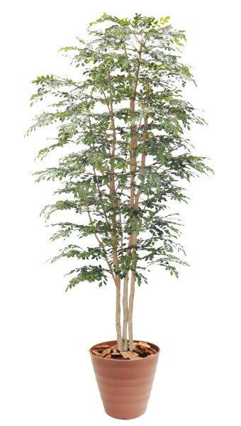 トネリコの木230cm3本株立(造花 観葉植物 インテリア 人工 フェイクグリーン)