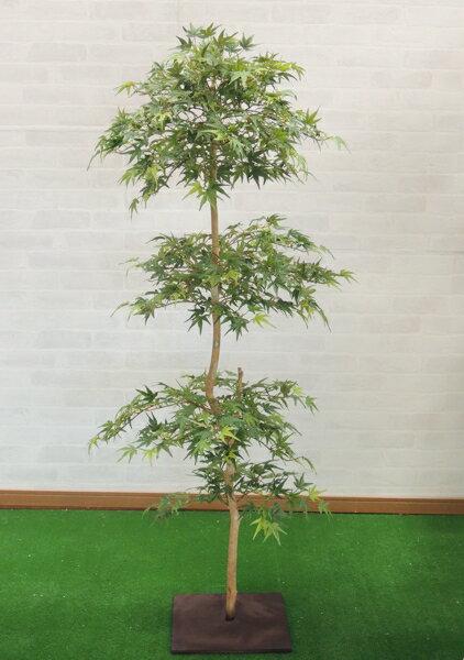 グリーンモミジ 150cm (造花 観葉植物 緑 和風 ガーデニング 造園 庭園 坪庭 もみじ カエデインテリア おしゃれ 室内)