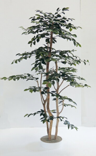 さざんか 120cm(造花 人工観葉植物 サザンカ 和風 インテリア 造園 庭園 坪庭 おしゃれ 室内ツバキ科)