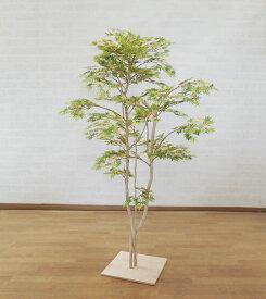 モミジ グリーン 120cm (造花 観葉植物 もみじ 紅葉 和風 ガーデニング 造園 庭園 坪庭 インテリア おしゃれ 室内)