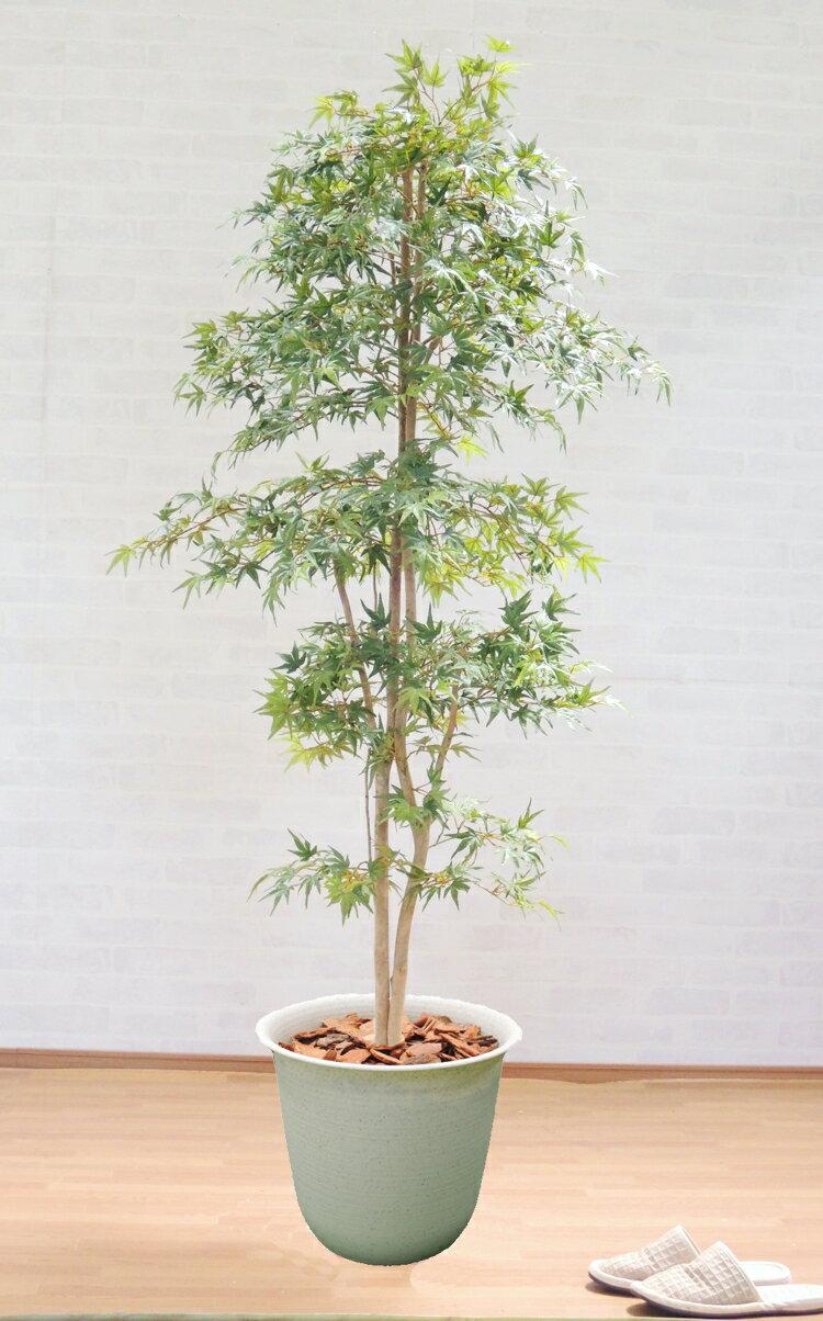 グリーンモミジ 230cm (人工 観葉植物 インテリア 造花 緑 もみじ 2.3m おしゃれ 室内 大型)