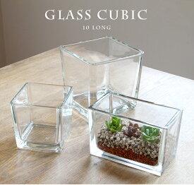 CUBIC 10 LONG【テラリウム/ガラス/多肉植物/鉢/水槽/花瓶/】
