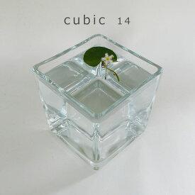 CUBIC 14【テラリウム/ガラス/多肉植物/鉢/水槽/花瓶/メダカ】