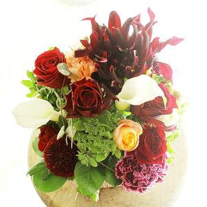 アレンジメントフラワーSサイズ Vivid Red(赤系)※デザイナーが手がけるお洒落な一品お見舞い 入院見舞い 快気祝い 退院祝い 贈り物 フラワーギフト プレゼント お祝い お花 送料無料 メ