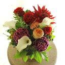 アレンジメントフラワーSサイズ Vivid Red(赤系)※デザイナーが手がけるお洒落な一品。歓迎祝い、退職祝いなど、人…