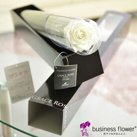 プリザーブドフラワー Luxury Rose パールホワイト(FL092-01)お洒落なステム(円柱ケース)入り1輪バラのプリザーブドフラワー!お祝い事のフラワーギフト・贈り物、記念品などの配布にオススメの一品【送料無料】