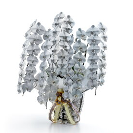 カラー胡蝶蘭 彩 - irodori - 5本立60輪以上(シルバー)受賞祝い 授賞祝い 受章祝い 就任祝い 栄転祝い 贈り物 フラワーギフト プレゼント お祝い お花 送料無料 メッセージカード無料 ラッピング無料 立札無料 楽ギフ