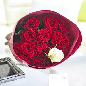 【メッセージ入り】花束・ブーケ 赤バラ20本 皇室献上実績のバラ農園から宅配直送誕生日 結婚祝い 開店祝い 就任祝い 長寿祝い 新築祝い 引越し祝い 退職祝い 贈り物 フラワーギフト プ