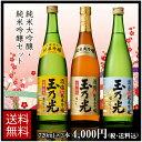 日本酒 純米大吟醸・純米吟醸720ml×3本セット TS-3B【送料無料】