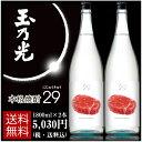 本格焼酎 29(にじゅうきゅう)1800ml×2本 送料無料