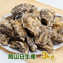 【殻付き生牡蠣】 岡山県 日生産 牡蠣 | 家庭用3kgパック牡蠣むきナイフ、軍手付き 加熱用■ 送料無料バーベキュー BB…