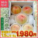 ■岡山県産 清水白桃■家庭用 お手軽小箱■1.5kg(5玉〜6玉入)■桃/白桃/もも/モモ ランキングお取り寄せ