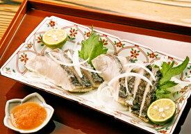 ■鰆のたたき■サワラ瀬戸内海の新鮮な魚/ままかり・さわら・牡蠣・カキなど種類豊富【干物/珍味/おつまみ/たたき】