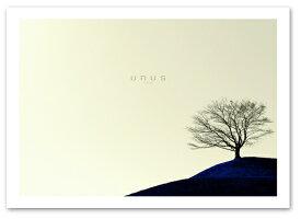 A3サイズ ポスター 【Unus】 インテリア アート フォトポスター Interior Art Poster