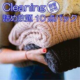 宅配 クリーニング 保管パック 10点まで 詰め放題 保管付き しみ抜き付き