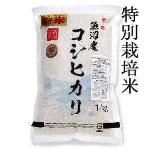 令和3年 新米魚沼産 魚沼産コシヒカリ 特別栽培米 一等米 令和3年 新米 1キロ 1kg (約6.6合) 新潟 こしひかり ギフト