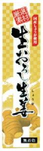 生おろし生姜(チューブ) オーサワジャパン 40g×2個