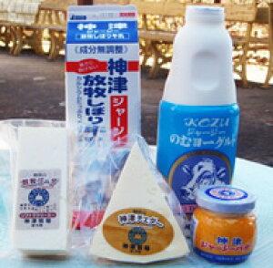 神津牧場 アラカルト ミニセット(5個)【ジャージ牛乳、飲むヨーグルト、発酵瓶バター、チェダ?、ゴーダチーズ】