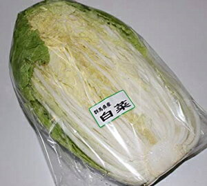【ムソーの安心野菜】白菜1/2カット 1/2カット 減農薬