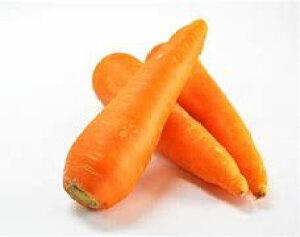 【ムソーの安心野菜】【冷蔵】特別栽培 人参 洗い 10kg