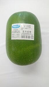 【ムソーの安心野菜】ミニ冬瓜 1個  無農薬 冷蔵